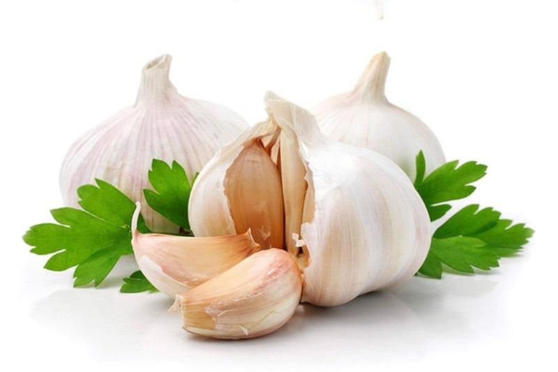 Tỏi được coi là thứ nguyên liệu không thể thiếu trong các món ăn Việt