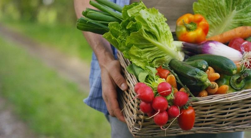 Bị hôi miệng nên ăn gì? Nên ăn rau củ quả như dưa chuột, xà lách,...