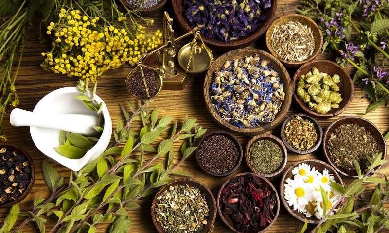 Một số bài thuốc Đông y được chỉ định cho bệnh nhân